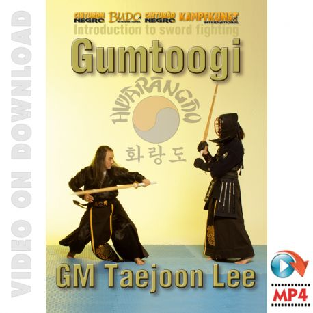 hwa-rang-do-gumtoogi-sword-fighting.jpg