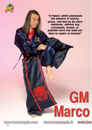 Hwa Rang Do Grandmaster Taejoon Lee August 2020 Budo Internation