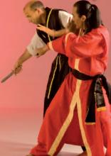 Grandmaster Taejoon Lee June 2015 Budo International