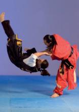 Hwa Rang Do Grandmaster Taejoon Lee October 2019 Budo International